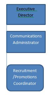 2016-recruitment-promotions-flow-chart